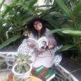 @Hakcipta Naning Pranoto. (BAGIAN DARI ISI BUKU YANG SEDANG SAYA TULIS) Bicara tentang literasi saya umpamakan seperti bicara tentang pohon yang terdiri dari akar, batang, dahan, ranting, daun, bunga dan […]